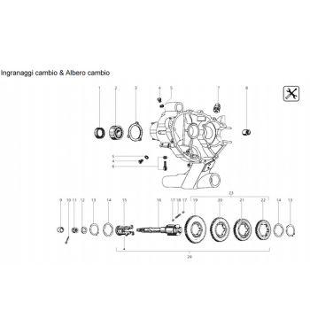 Ingranaggio 2a marcia Z 42 DRT STEEL F1 per Vespa 50/ 50 special/ ET3/ Primavera/ PK50-125/ ETS